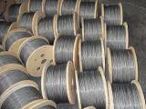 Corde galvanisée 6X37 de fil d'acier pour la charge gauche
