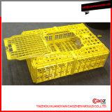 Moulage de caisse injection/de caisse/oiseau en plastique de volaille