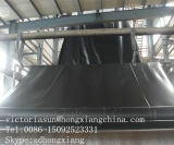 Stagno Geomembrane del sale
