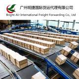 La distribution exprès de courier de DHL de taux globaux bon marché d'expédition de Chine vers l'Islande