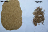 Vsee RGB 가공 식품 기계 곡물 황색 참깨 색깔 분류하는 사람