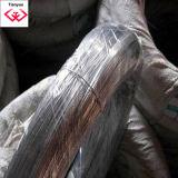De alambre de hierro galvanizado (TYD-20)