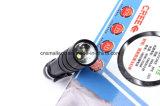Torcia elettrica della polizia della batteria del AAA con Ce, RoHS, MSDS, iso, SGS