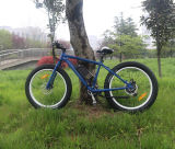 Bicicleta gorda do pneu MTB E com melhores tipos elétricos da bicicleta