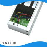 280kgs LED Single Door Magnetic Lock con Door Sensor