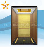 Passagier-Höhenruder-Aufzug-China-Lieferant