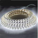 Streifen-Licht der LED-helles R/Y/B/G/W/Ww/RGB Farben-SMD LED