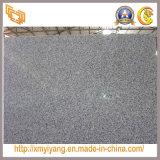 Wall Flooring Countertop G603のための熱いSale White Granite Slab