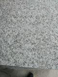 Королевские слябы гранита Роза Classico Bianco Sardo G439 Whit полные