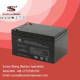12V tipo de reserva batería del AGM de la fuente de alimentación del voltaje 14ah de VRLA