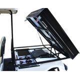 Carro Del3022dh del cargo del vehículo eléctrico del panel solar