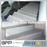 Pedra cinzenta natural chinesa popular/escadas de pedra de Granitle G602&G603/etapa/passo/montante