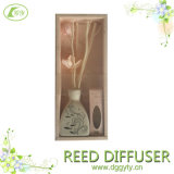 100ml Interior Sweet Pink Design Aroma Reed Difusor Material 또는 Fragrance Oil, Wood, Ceramic Bottle, Fashion Diffuser
