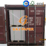 Carta patinata del lato di formato uno di buona qualità A2/A3 per il commercio all'ingrosso