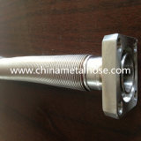 Selling caldo Corrugated Stainless Steel Tubing Made in Cina