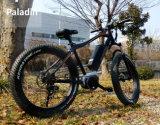 Sede a pile della bici delle biciclette delle donne di adulti delle bici