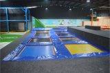 Professional Trampoline及びBasketball Hoopの子供のTrampolineの土地Park