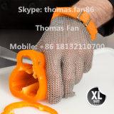 Перчатка ячеистой сети нержавеющей стали для обрабатывать устрицы одежды Butcher