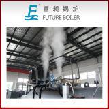 Caldeiras de vapor ateadas fogo horizontais do óleo da melhor qualidade (gás)