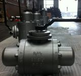 Wcb Forged Steel Flange api Ball Valve con Worm Gear