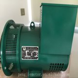 St Stc 100% 구리 철사 발전기 Sngle 단계 AC 동시 자동 발전기 220V 5kw