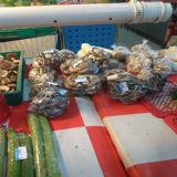 Duidelijke HDPE Plastic Vlakke Zak op Broodje
