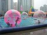 Bola inflable del agua de TPU que camina 0.8/1.0 para la piscina (FLWB)
