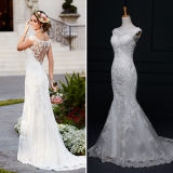 Lace Tulle Satin Mermaid Wedding Dresses (TM-mm001)