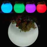 Giardino chiaro Pots Illuminated Planter Glow di Pots a Night