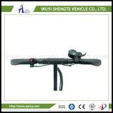motorino elettrico d'Equilibratura della Due-Rotella di 36V 10inch