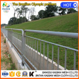 Rete fissa provvisoria esterna del giardino di sicurezza decorativa galvanizzata alluminio