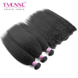 Brasilianisches Hair Bundles mit Lace Frontal