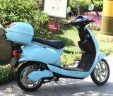 2016電気新製品500With800Wの小型安いスクーター