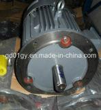 Eficiência elevada motor elétrico da C.A. de 3 fases