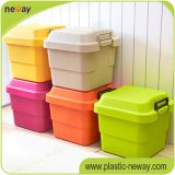 Heavy barato Stock Plastic Storage Box com Dividers e Tool