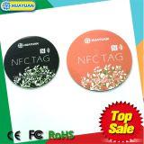 Tag laminado do PVC MIFARE DESFire EV1 RFID para o pagamento da alta segurança