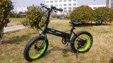 Batería plegable eléctrica de la bici adentro