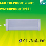 Cer Approved 3FT Waterproof LED Light mit 30W Power