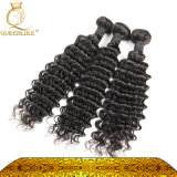 브라질 머리 또는 곱슬머리 또는 도매 머리 (FDXI-BD-012)
