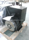 Stamford Alternator Factory kopieren in China Faraday WS Alternator (FD2C)