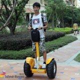 よい価格250ccの電気スクーターの強力な移動性のスクーター