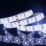 Indicatore luminoso di striscia flessibile esterno della decorazione SMD2835 LED con il CE RoHS dell'UL