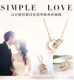 Form-Zubehör-hängende Edelstahl-Halskette