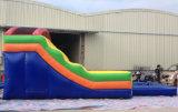 Glissière d'eau gonflable de vente chaude d'été/double glissière d'eau gonflable de ruelle avec la piscine