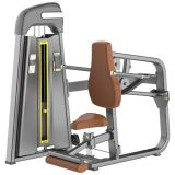 Body Buildingのための体操Equipment Fitness Equipment Professional Seated DIP