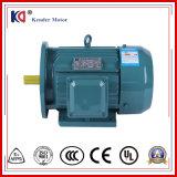 織物の機械装置のための3-Phase誘導電動機