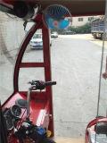 中国の新しく標準的な自動人力車の乗客の三輪車、Bajaj Trikeの閉じるガス3の車輪のオートバイ