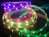 CE EMC LVD RoHS dos años de garantía, luz de tira a todo color del LED Digital IC RGB, luz cambiante del color