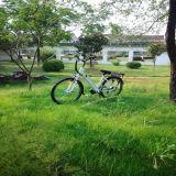 26inch verstecktes Batterie-elektrisches Fahrrad Rseb-303