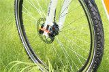700cc verstecktes Batterie-BergEbike elektrisches Fahrrad-Fahrrad